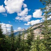 Тропинка в горы :: Константин Шабалин