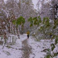 Первый снег---08 :: Владимир Холодный