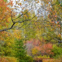 Осень. Древний уголок :: Олег