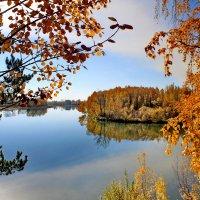 Золотая осень :: Галина