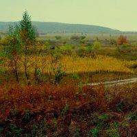 Осенние сумерки :: Милла Корн