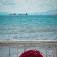Красное на синем :: Анна Куценко