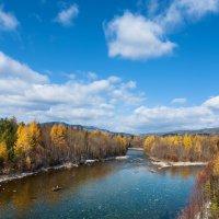 Сибирские реки. Река Быстрая :: Анатолий Иргл