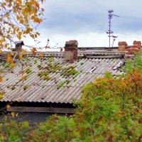 Крыша старого дома. :: Алена Малыгина