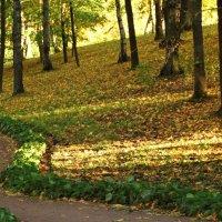 Дорожка,горка и деревья :: Владимир Гилясев