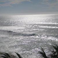 Океан :: Елена Безнасюк