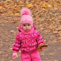 Осенние листья :: Валерий Талашов
