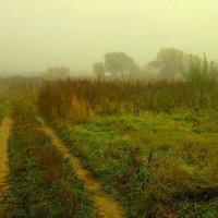 Туманная дорога :) :: Милла Корн