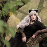 У лукоморья дуб зелёный... :: Руслан Комаров