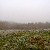 Утро туманное... :: Анатолий Антонов