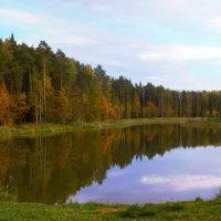 Осень. Сказочный чертог, Всем открытый для обзора. Просеки лесных дорог, Заглядевшихся в озера. :: Yuri Chudnovetz