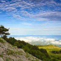 Выше облаков :: Ольга