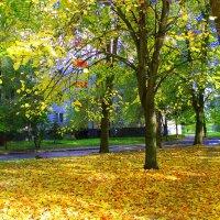 Листья золотые устилают парк. :: Валентина ツ ღ✿ღ