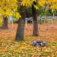 Осень :: Константин Бобинский