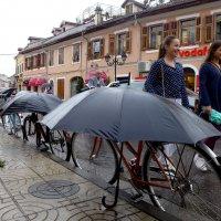 Велосипеды - в любую погоду!! :: Стил Франс