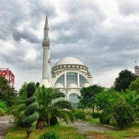 Тирана :: Стил Франс