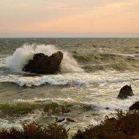 Море Азовское. :: владимир