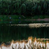 Будет хороший день! :: Владимир Безбородов