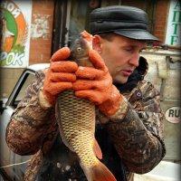 Налетай, ещё живая рыбина! :: Андрей Заломленков