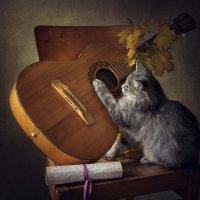 Гитаристка :: Ирина Приходько