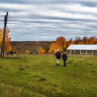 Пастухи :: Андрей Качин