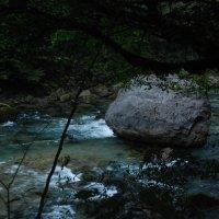 река Бзыбь, Абхазия. :: Нелли *