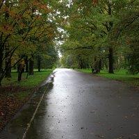 Осенние прогулки 2 :: Евгений Персианов