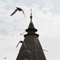 Свято Пафнутьев Боровский монастырь :: Игорь Смолин