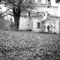 Осенью :: Сергей Тарабара