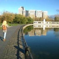 Останкинский пруд :: Павел Михалев
