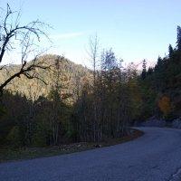 Утро в горах Абхазии :: Нелли *