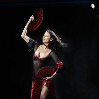 Танец с веерами :: Александр Амеличкин