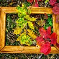 Осенний натюрморт :: Ольга