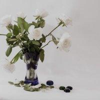 В моей комнате белые розы стоят :: Alla
