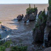 А ведь мы бродили здесь посуху по морскому дну, см. снимки (Hopewell Cape Rocks, Canada) :: Юрий Поляков