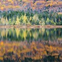 Середина Осени.. :: Slava Sh