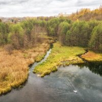 Лебединое озеро :: Дмитрий Погодин