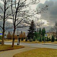 Облетели листья :: Олег Попков