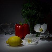 Желтое и  красное :: Наталия Лыкова