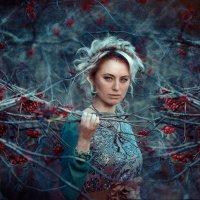 В тёмно синем лесу :: Roman Sergeev