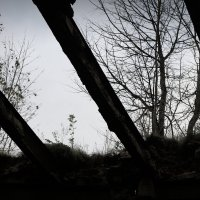 Аракчеевские казармы (октябрь 2016г.) :: Татьянка Ловик