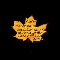 кружатся  желтые листы,  и не хотят коснуться праха :: юрий