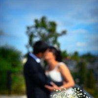 свадебные цветы :: shota