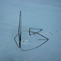 Геометрия на воде :: Вера Моисеева