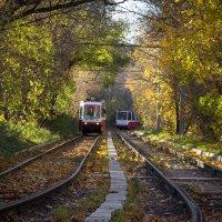 Осенний маршрут :: Elena Ignatova