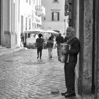 Музыкант. Рим. Италия :: Ольга Кан