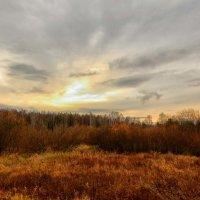 Природа осень :: סּﮗRuslan HAIBIKE Sevastyanovסּﮗסּ