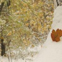 Первый снег :: ARS