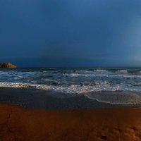 весенним золотом покрыты берега :: viton