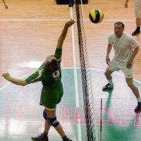 Соревнования по волейболу 4 :: Людмила Мозер